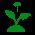 Способствуют росту растений